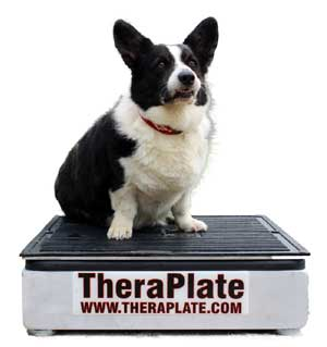 TheraPlate Revolution K4 Pet Sized Model