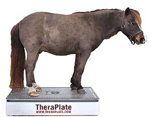 TheraPlate Revolution K10.5 Pet Sized Model